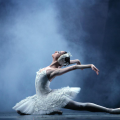 Moscow City Ballet. Swan Lake