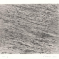 Vija Celmins. Eleven Works and a Film