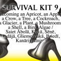 SURVIVAL KIT 9